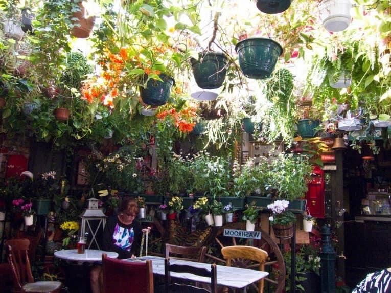 Верхняя веранда паба - и здесь подвесной сад