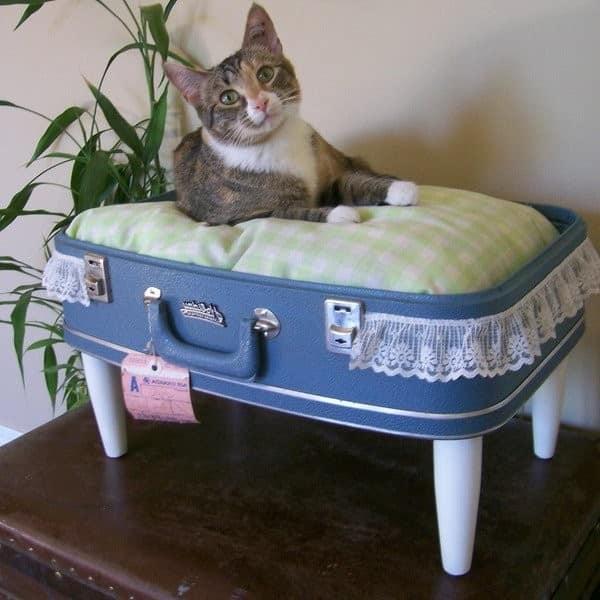 Кроватка для кошек из старого чемодана
