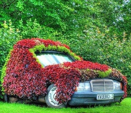 Клумба из старого автомобиля