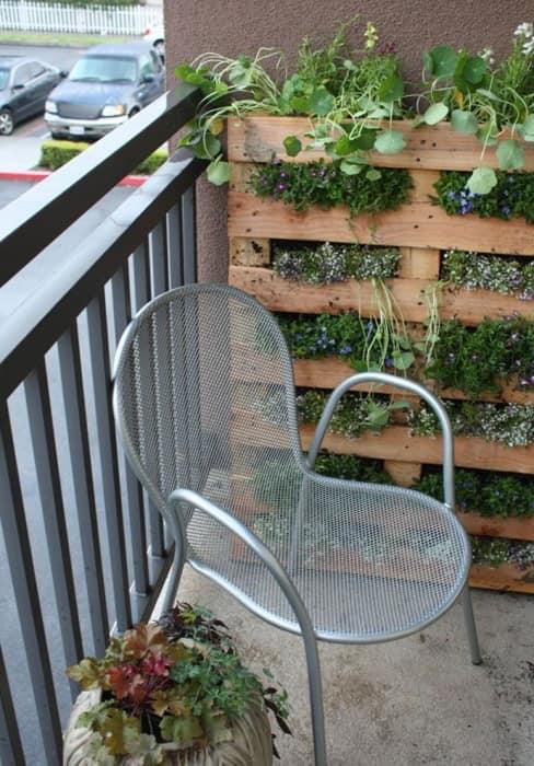 Сад из паллетов на балконе
