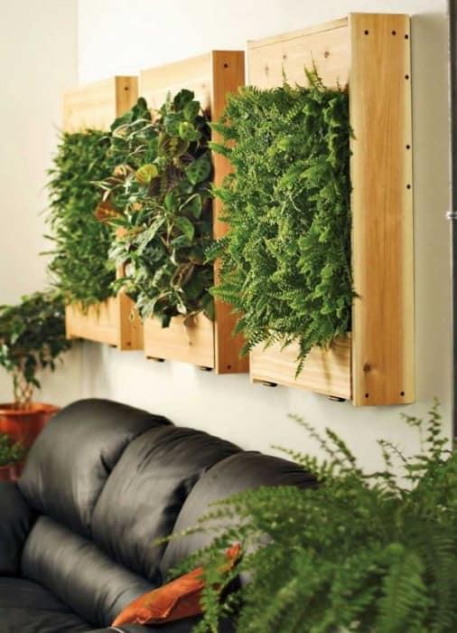 Вертикальный сад из паллетов на стене