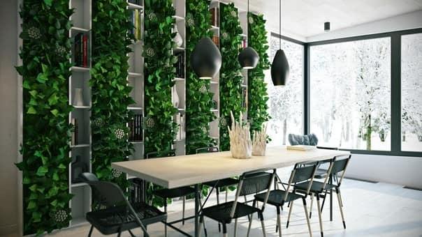 Вертикальное озеленение помещения