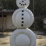 snegov06