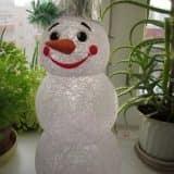 snegov14