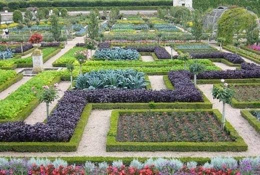 Современный огород во французском стиле