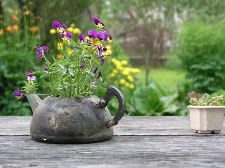 Старый чайник легко превращается в уличный вазон на даче