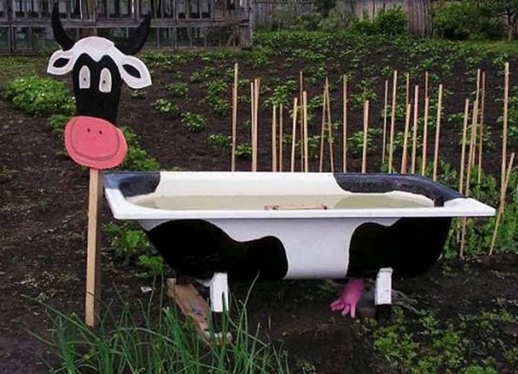 Забавная корова из старой ванны