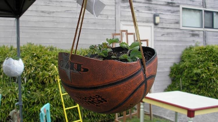 Необычное кашпо из баскетбольного мяча