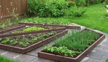 Ограждения для грядок: из чего сделать бортики и бордюры на огороде (20 фото)